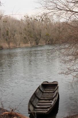am Fermasee bei Neuburgweier (G. Franke, 28.02.16)