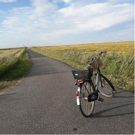 Radeln in Schleswig Holstein