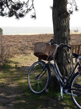Fahrradtour Nordsee mit Gazelle