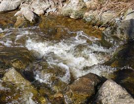 Kraftvoll fließendes Wasser; MediTrigon