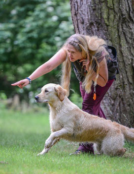Jennifer Elskamp Training Retriever CBR WorkandTalk Work&Talk Rassetreffen Spezialist Wasserarbeit