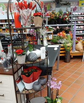 Kalligrafie Event Gartencenter Valentinstag