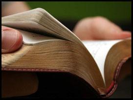 Erotischer Lesungsabend