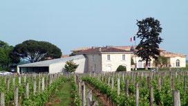 Château Petrus - Pomerol (33)