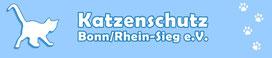 Katzenschutz, Rhein-Sieg Kreis, Katzen, Katzenrettung, Tierschutzkatzen, adoptieren, Pflegestellen, Bonn, Rhein-Sieg Kreis