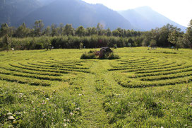 Labyrinth im Vilser Baumkreis