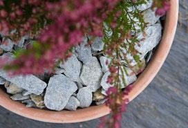 ©COULIDOOR  Sur-mesure Aménagement Cave à vin Chêne Halifax Naturel (p31)