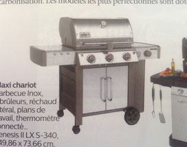 Weber, Barbecue inox