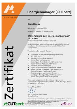 Bernd Meier, Energiemanager