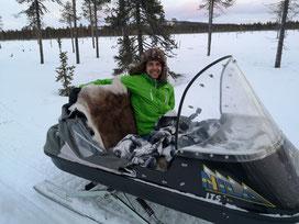 Winterurlaub in Schweden Lappland - Elchsafari