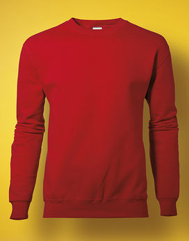 Sweatshirt SG20