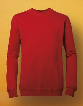 Kids Sweatshirt SG20K