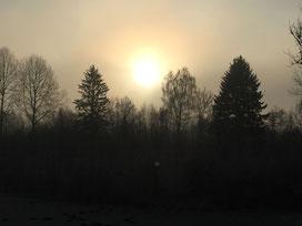 Sonnenmorgen in den Lechauen LBV Donau Ries