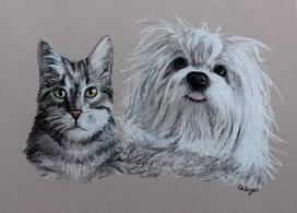 cute dog and cat drawing in full color