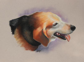 cute happy dog drawing in pastel