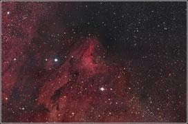 IC 5070 Pelikan-Nebel