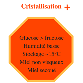 Eléments accélérant la cristallisation