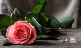 CLI, fleurs artificielles BtoB
