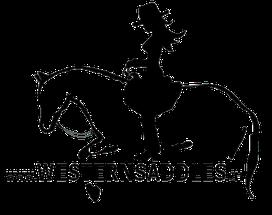 Ein Sattel muss passen - und zwar dem Pferd und seinem Reiter