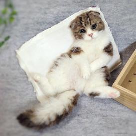 羊毛フェルト猫 needlefelted cat