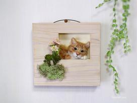 羊毛フェルト猫 茶白 needlefeltcat