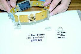 飼い主の連絡先などを記入した、プラスチック板の「迷子札」。前方は原形、後方(首輪に装着したもの)は加熱後に縮小したもの