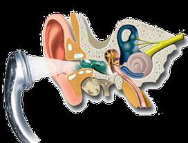 Se nettoyer les oreilles avec eau savonneuse