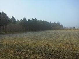 相良村の朝霜