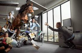 Лошади в Самаре
