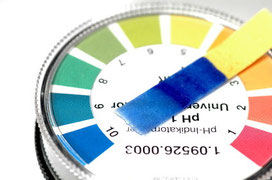 pH Tester zur Bestimmung des pH-Wertes von Hanferde , Substrate & Wasser