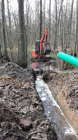 Über viele Jahrzehnte hat ein aufgeschütteter Wegedamm den großen Erlenbruch nördlich der B39 zweigeteilt. Hier wird das Verbindungsrohr verlegt, damit künftig auch der westliche Teil von der verbesserten Wasserzufuhr profitieren kann. © Peter Scheurer