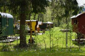 Schäferwagenhotel Wildberg