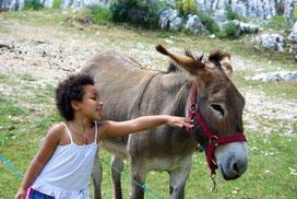 Bien choisir sa randonnée avec un âne