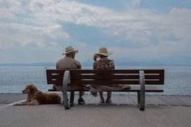 Un homme et une femme assis sur un banc face à la mer et leur chien couché prés d'eux par coach canin 16 éducateur canin en charente