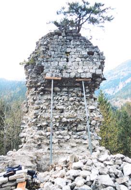 Mauerzahn vor der Restaurierung mit Baum