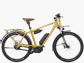 Charger GX: das Reise e-Bike