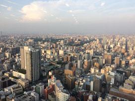 セミナー会場は34階。名古屋の街並みが一望できるんだがや。