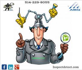 Daniel Gaudreau inspecteur en bâtiment membre de l'Association des Inspecteurs en Bâtiment du Québec en bien équipé avec une norme de pratique et une assurance erreur et omission.