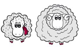 Grace O'Sheep und ihre Freundin das Merinowollschaf
