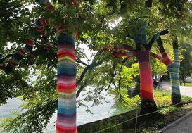 04. September 2014 - Wenn Bäume Kleider tragen