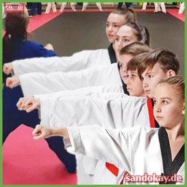 Grafik Abschnitt - Erlerne Kampfsport in Itzehoe by Akademie Sandokay