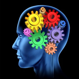 Brain with gears Executive Functioning