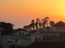 Paysage de  la terrasse de La Palma Hostel