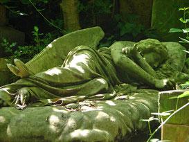 Engel, schlafend