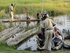 Beginn einer Mokoro-Safari