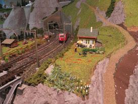 Geländebau 2014-04 (3647)