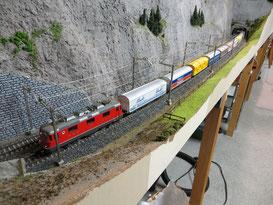 Food-Zug gezogen von Wildsau (3012)