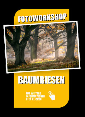 Fotoworkshop Landschaftsfotografie zwischen Elbe und Mulde mit Sebastian Kaps