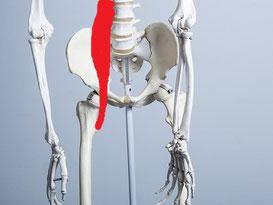 靴下を履くときに腰痛の原因