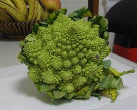 フラクタル的な野菜・ロマネスコ